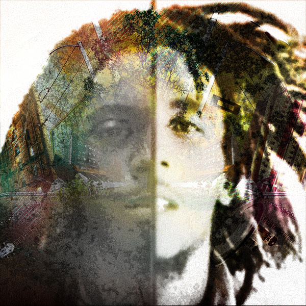 Lil Wayne vs Bob Marley (vs Pretty Lights)