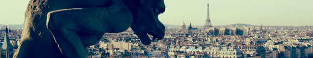 Paris (banner)