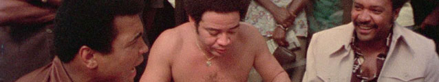 Bill Withers (banner)