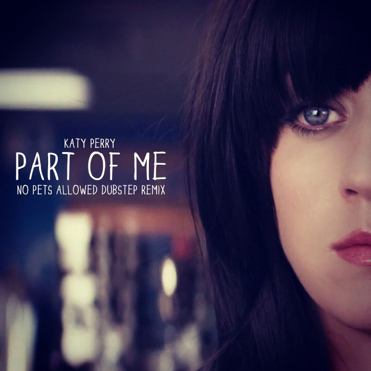 Katy Perry - Part of Me (No Pets Allowed Dubstep Remix) (Artwork)
