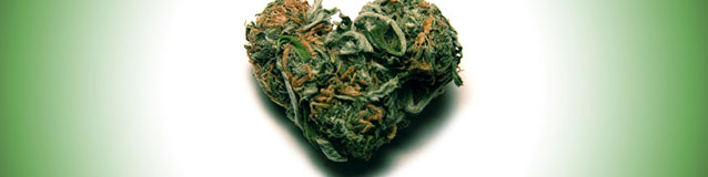 Marijuan Love (banner)