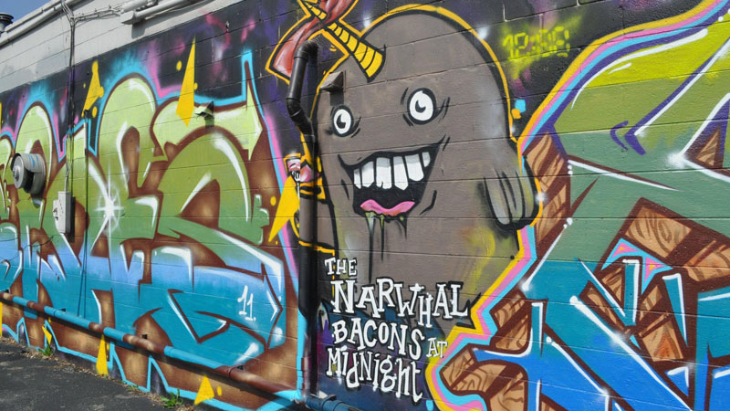 Narwhal Graffiti