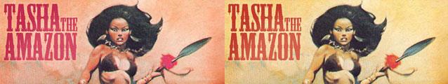 Tasha the Amazon (banner)