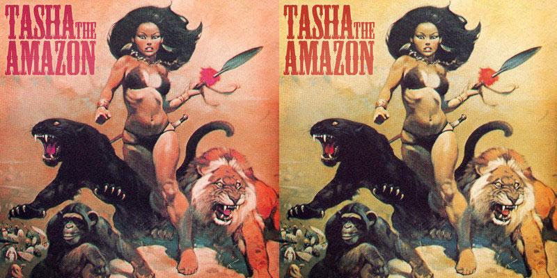 Tasha the Amazon (Artwork)