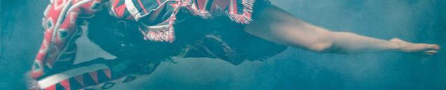 Violetness (banner)