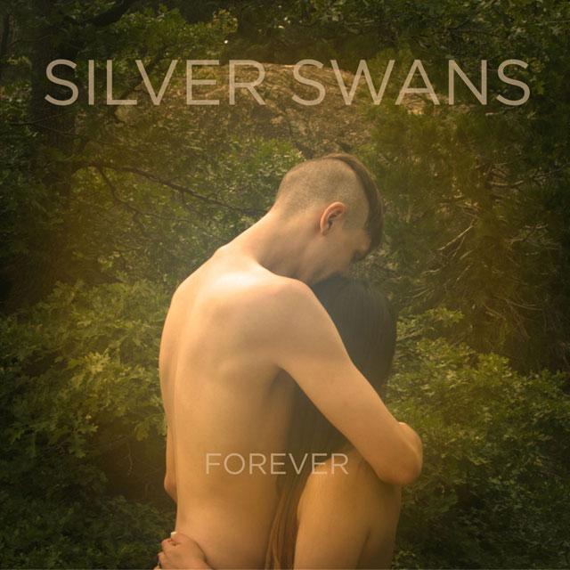 Silver Swans - Forever (artwork)