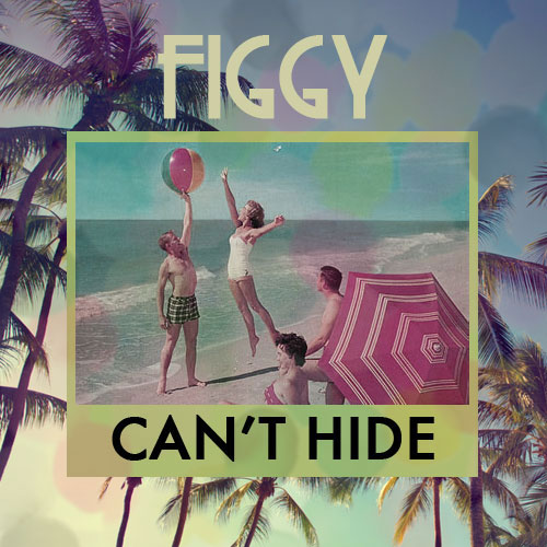 Figgy - Can't Hide (artwork)