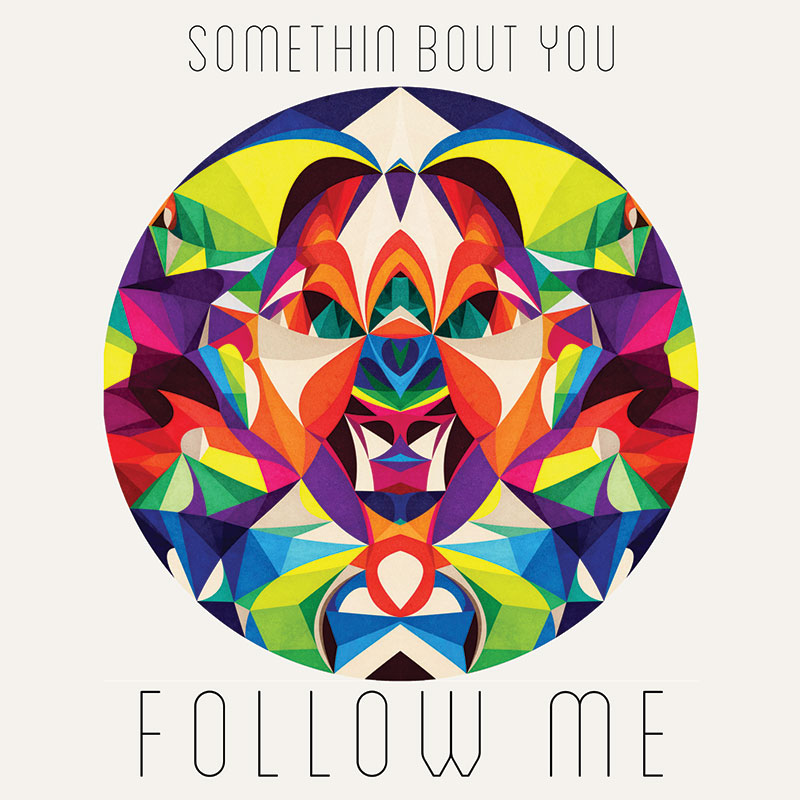 Follow Me - Somethin Bout You (artwork)