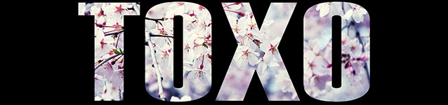 Toxo Music (banner)