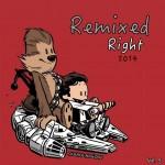 Remixed Right 2014, Vol. 5