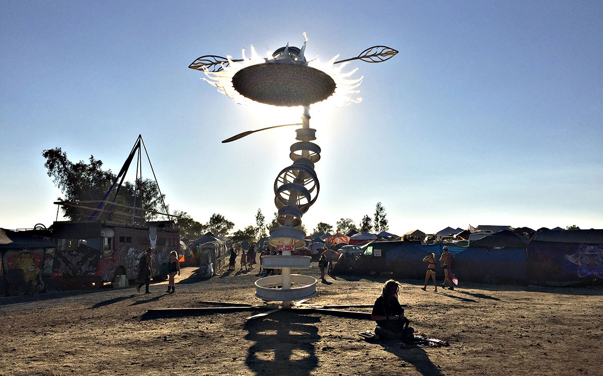 Symbiosis Gathering Sunflower 2015